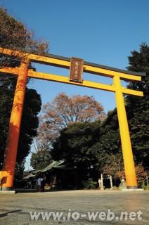 川越、氷川神社